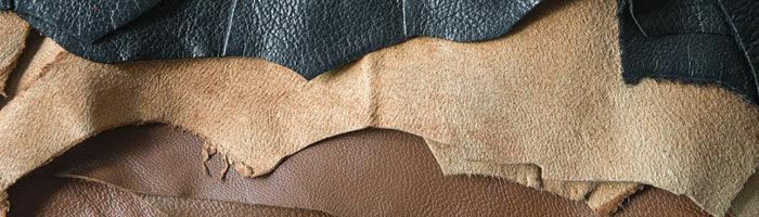 Skötsel av läder och skinn